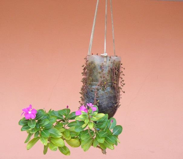 Reverse planter